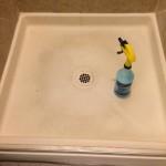 Blue Dawn/Vinegar Cleaning Win!